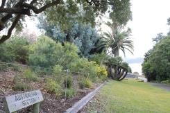 Botanical Gardens Hobart